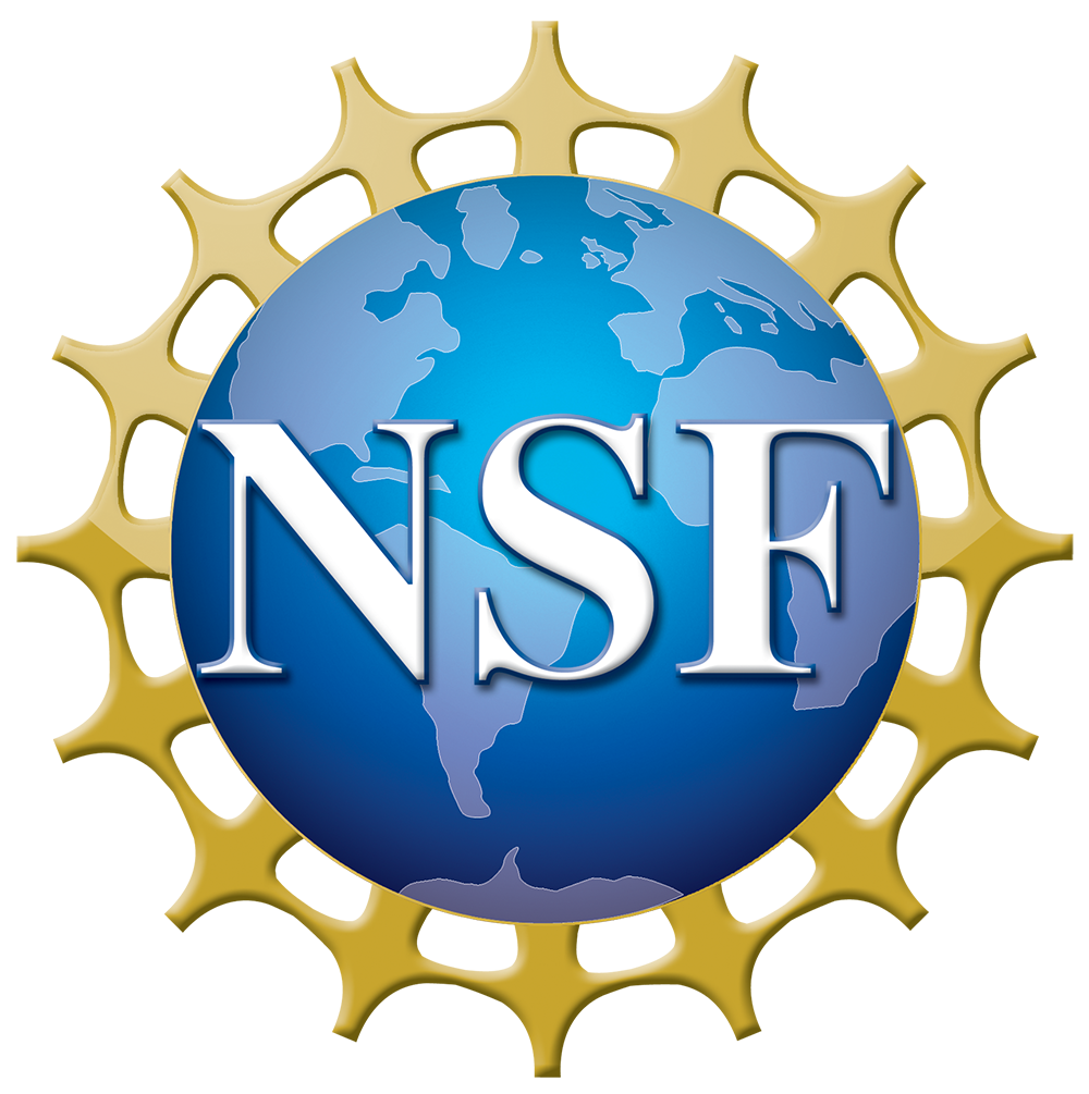 NSF Large Facilities Workshop